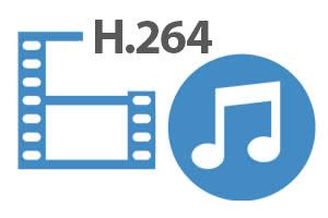 DVR / NVR PNI House H816 - 16 canali IP 960