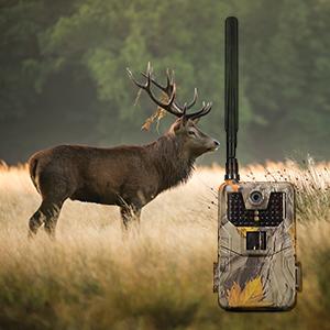 Camera vanatoare PNI Hunting 840S cu Internet