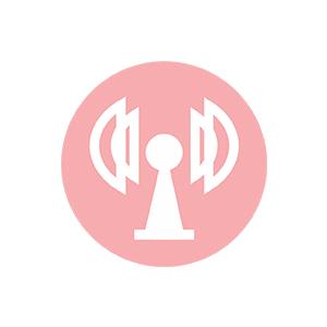 antena cb president