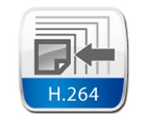 6.PTZ800 H264-Recording